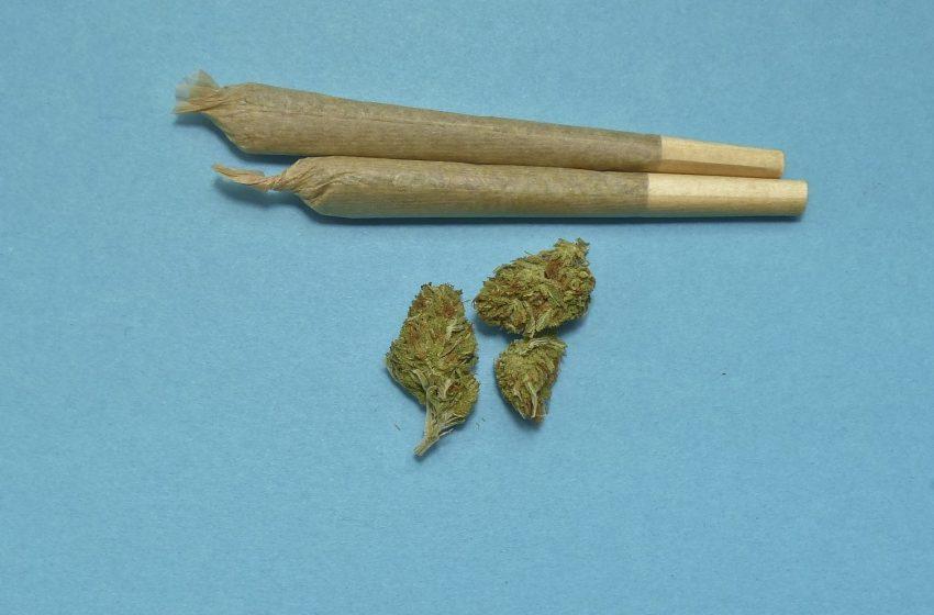 Задържаха плевенчанин за притежание на марихуана и пико