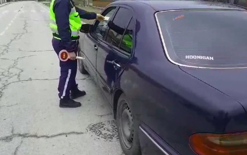 Спецакция в Плевенско, петима в ареста
