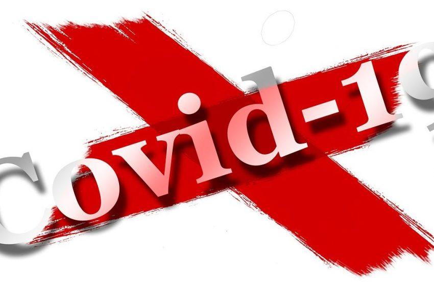 Само 6 случая на коронавирус са установени за последното денонощие в България