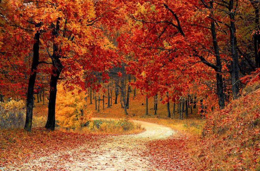 Времето през октомври – от минус 1 до 35 градуса